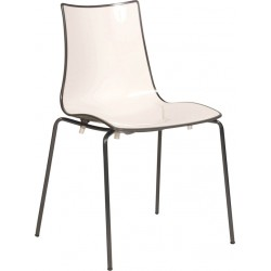 Zebra Bicolore Chair with Coloured Frame
